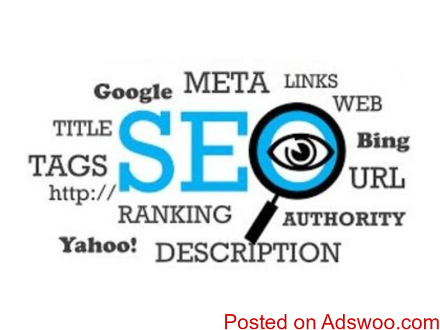Best SEO Company in Noida Delhi NCR India - TechPAPA