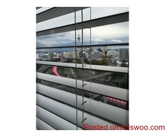Shades or Roller Blinds Auckland