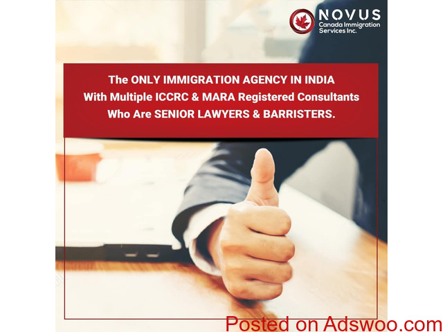 Immigration In Canada From India | Novusimmigration - 1/1