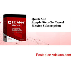How to run McAfee pre install tool?
