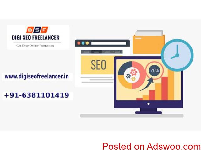 Best SEO  freelancer Expert in Chennai| Digi SEO Freelancer - 1/1