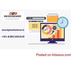 Best SEO  freelancer Expert in Chennai| Digi SEO Freelancer